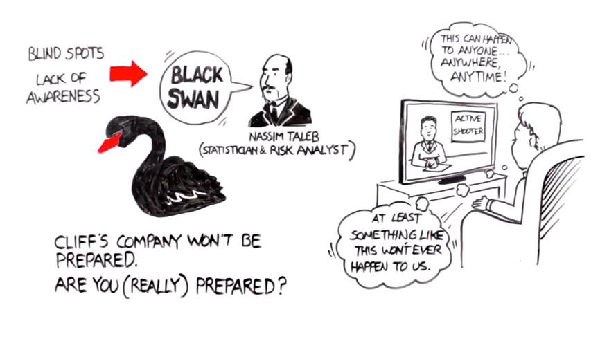 black swans are blind spots in risk assessment